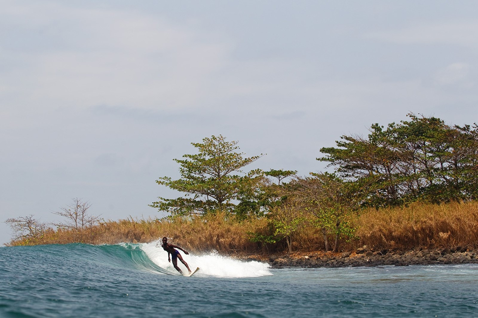 Afro Surf 3